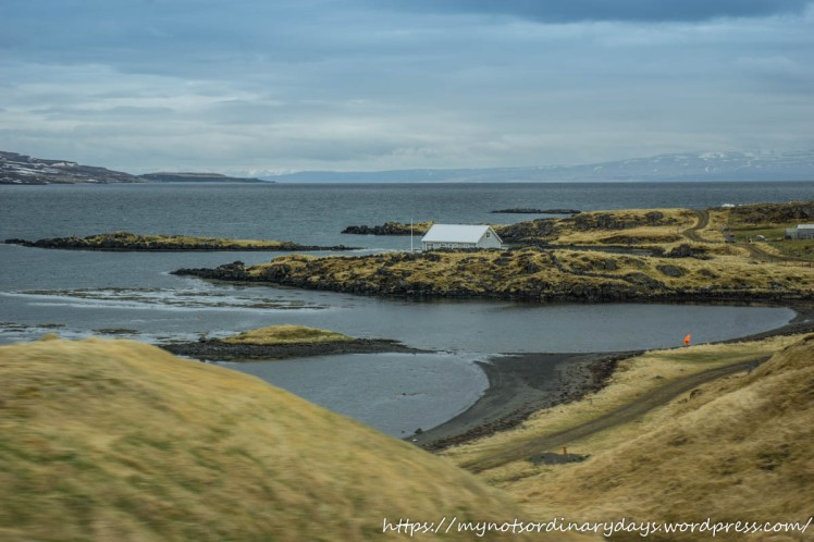 Iceland-on-the-way-to-Westfjords